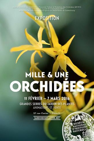 exposition exposition mille une orchid es 2016 au jardin des plantes paperblog. Black Bedroom Furniture Sets. Home Design Ideas