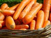 techniques pour éviter carottes
