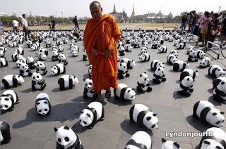 bangkok et ses 1600 pandas silence on expose d couvrir. Black Bedroom Furniture Sets. Home Design Ideas
