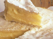 camembert Normandie, fromage typique terroirs