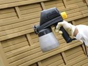 Supprimer mousses champignons bois extérieurs