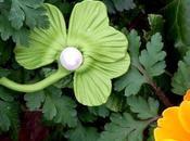 Trèfles perles broches pour St-Patrick