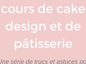 Donner cours cake design pâtisserie: série pour (futurs) pros suivre blog