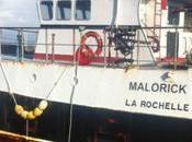 Rochelle port pêche vide bateaux
