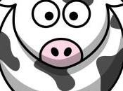 Investir dans vache, est-ce placement rentable?