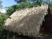 Vacances Guyane déconnexion assurée