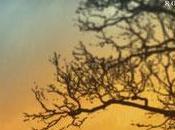 Enfuir l'hiver catherine ecole-boivin