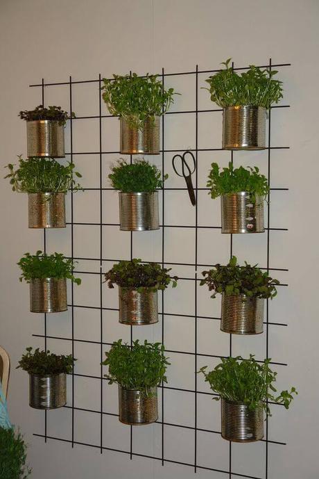 13 id es pour planter des herbes aromatiques en int rieur paperblog - Planter herbes aromatiques en pot ...
