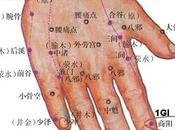 point méridien gros intestin (1GI)