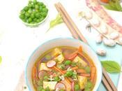 Bouillon pimenté légumes tofu mariné gingembre