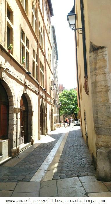 promenade à Lyon 8 - marimerveille