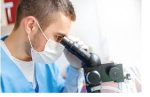 BRÛLURE et greffe de peau: Emprunter aux globules blancs leurs agents cicatrisants – Scientific Reports