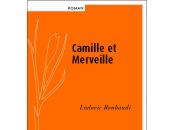 [lu] camille merveille l'amour coeur, roman ludovic roubaudi