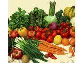 aliments plus nutritifs Terre