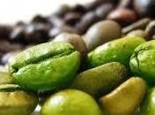 Svetol: grains café vert pour maigrir! vous devez savoir.