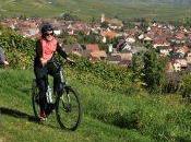 Réseau movelo Alsace automne toute beauté