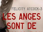 Felicity Atcock, tome anges sont mauvais poil, Sophie Jomain