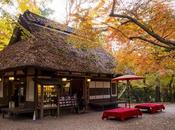 L'automne Japon saison idéale pour tourisme
