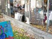CAUDERANIE: quartier Bordeaux organise rencontre avec habitants l'art