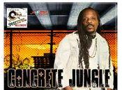 Chuck Fenda-Concrete Jungle-Voiceful Records-2016.