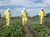 réseau Déphy fermes engagées contre pesticides
