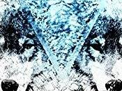 Chronique dernier Héritier Loups Livre Nathdawn