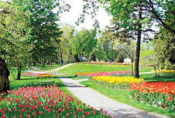 Le jardin secret voir - Il faut cultiver notre jardin signification ...