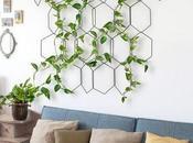idées originales pour végétaliser votre intérieur