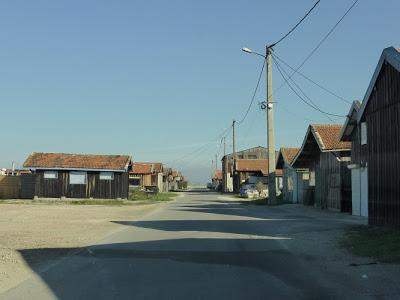 Gujan Mestras, le pays des huîtres