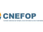 Cnefop valide projet décret l'emploi accompagné