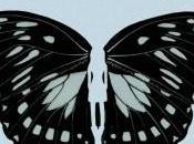 complexe papillon