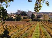 Images d'automne dans Gard