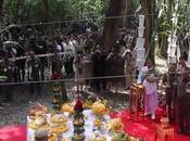 Cérémonie coupe bois santal pour cercueil royal (vidéo)