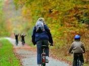 Picardie forêt verte Parcourez forêts vélos