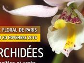 Très belle expo d'Orchidées parc floral Paris