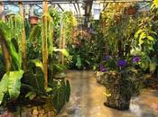 Visitez Orchidarium Prangins