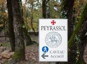 Commanderie Peyrassol vignoble Provence aime l'Art