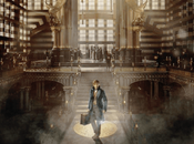 David Yates animaux fantastiques (Fantastic Beasts Where Find Them)