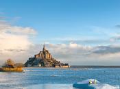 Ours Polaires Mont Saint-Michel
