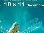 Salon Fées d'Arverne Gerzat (63) Samedi dimanche 11/12/2016