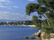 Cannes location faites côte d'azur