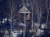 Cabane dans arbres