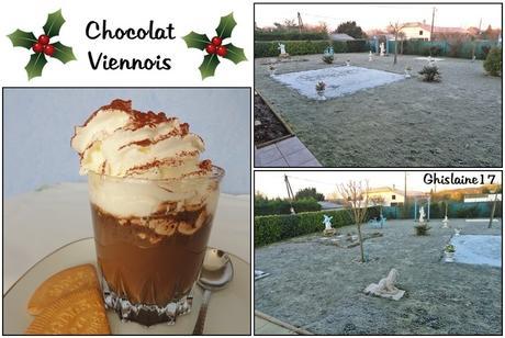 Chocolat Viennois (et jardin gelé par un matin d'hiver)