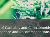 CANNABIS état preuve scientifique risques comme bénéfices National Academies Sciences, Engineering Medicine