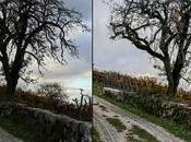 Comment développer minutes photo dans Lightroom sans prise tête
