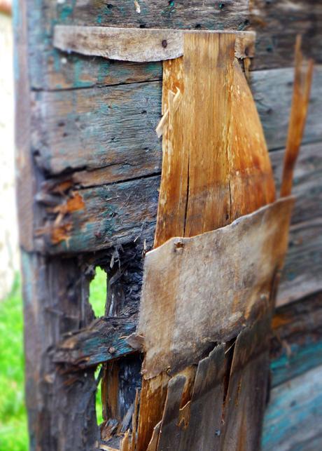 Le jardin secret de marseille voir for Le jardin marseille