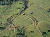 centaines géoglyphes sous forêt amazonienne