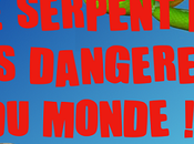 serpent plus dangereux monde