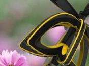 Drone abeille Plan