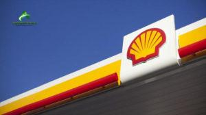 shell in nigeria essay The environment in which most organizations exist is increasingly dynamic and turbulent under-developing countries are competing to open up their.